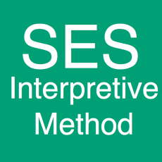Introducing Scaled Entity Search (SES): Interpretive Framework
